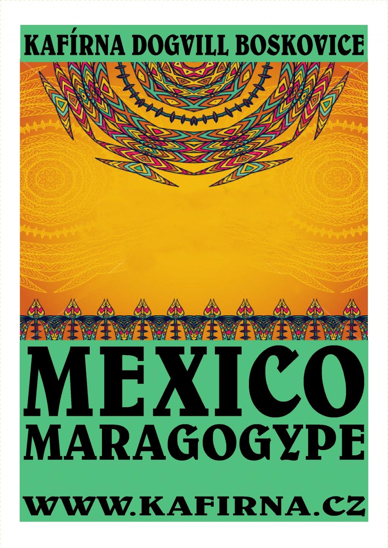 káva MEXICO Maragogype Superior