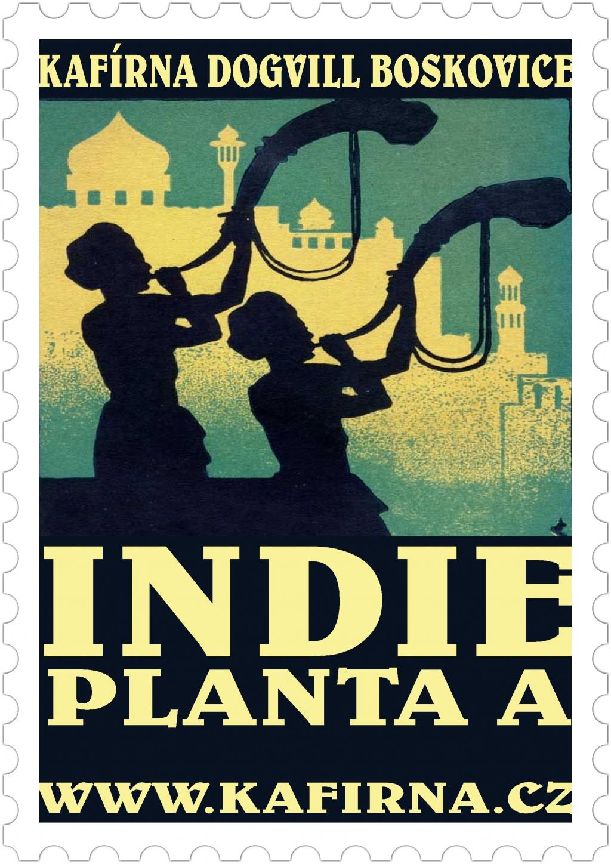 INDIE Planta A